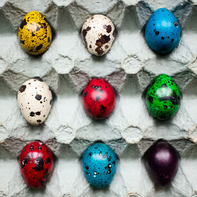 """""""Painted Easter quail eggs"""" stock image"""