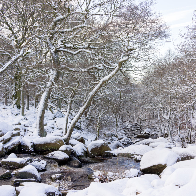 """Snow at Padley Gorge"" stock image"