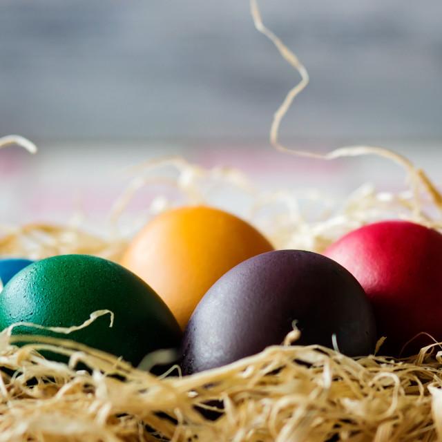 """""""Easter eggs in nest"""" stock image"""
