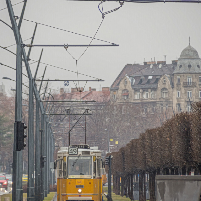 """Budapest Tram."" stock image"