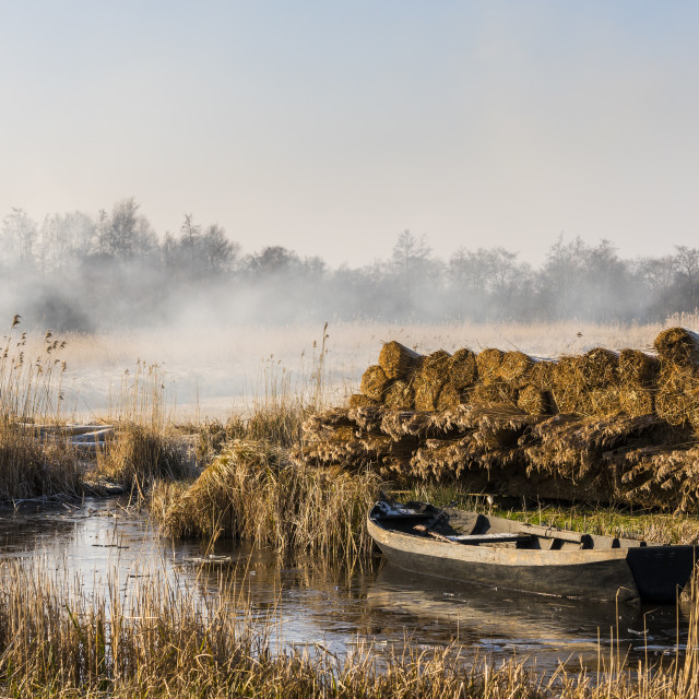 """""""Cane with Boat Giethoorn"""" stock image"""