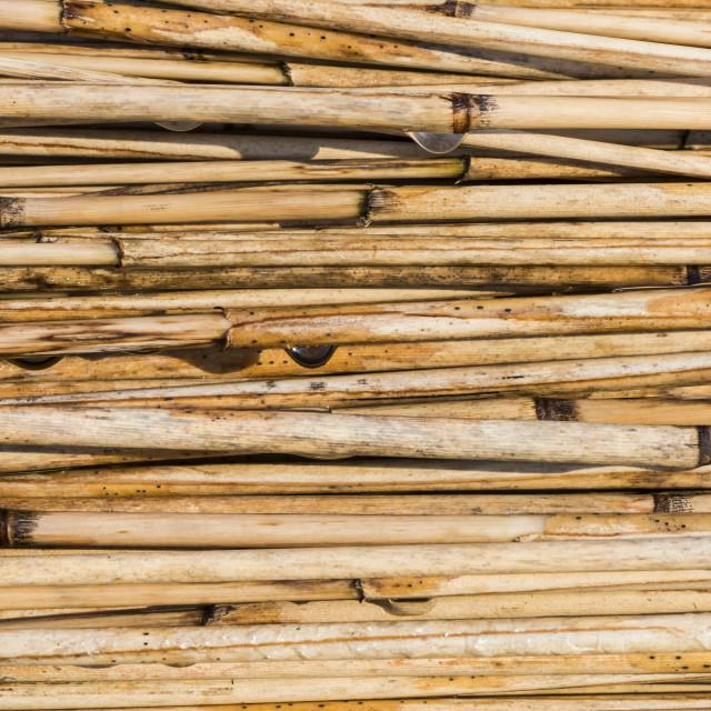 """Cane Texture Giethoorn"" stock image"