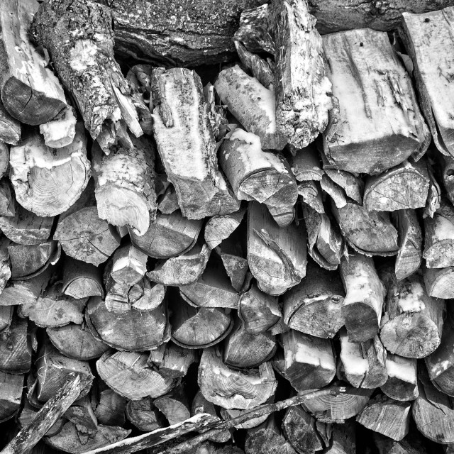 """Winter Wood Pile"" stock image"