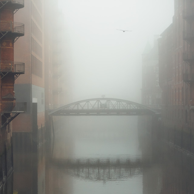 """""""City in mysterious fog"""" stock image"""