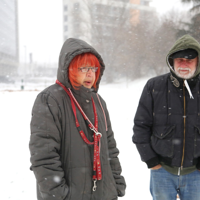"""""""Man and woman in senior years walking on blizzard day in park"""" stock image"""