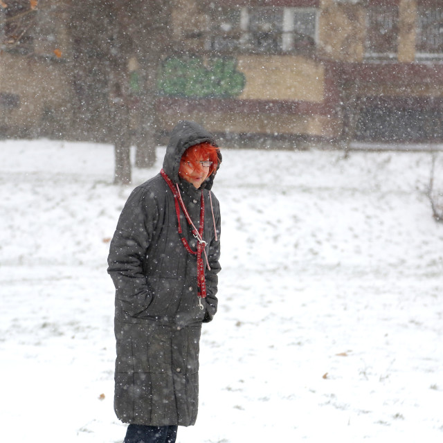 """""""Senior woman walking on blizzard day in park"""" stock image"""