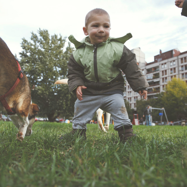 """""""Little boy playing and running with dog on grass"""" stock image"""