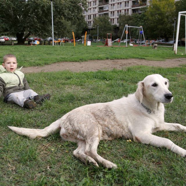 """""""Little boy and his dog laying on grass"""" stock image"""