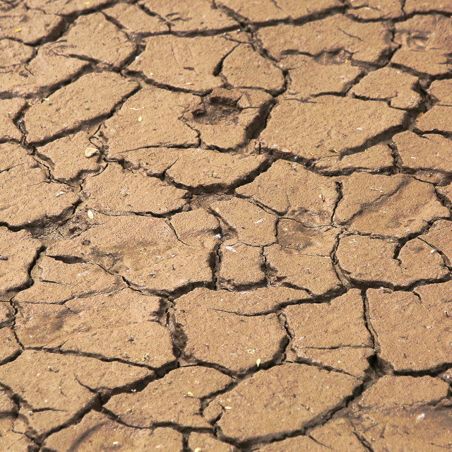 """""""Dried mud near the river"""" stock image"""