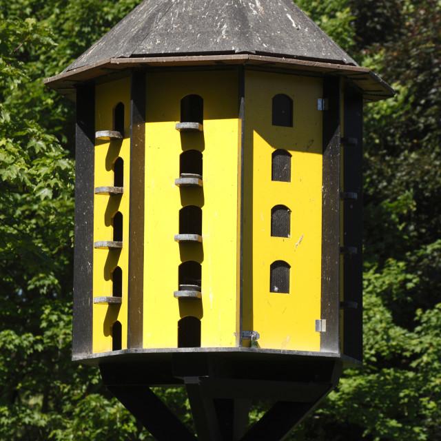 """""""yellow wooden aviary"""" stock image"""