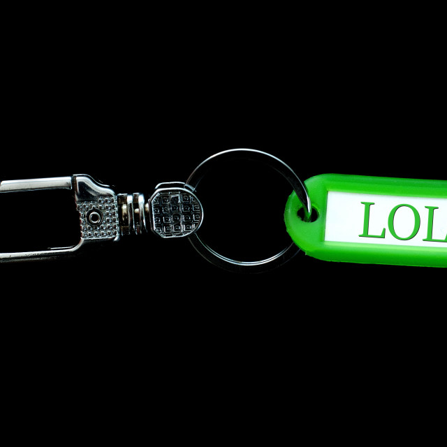 """Key holder and green label holder with text,lol"" stock image"
