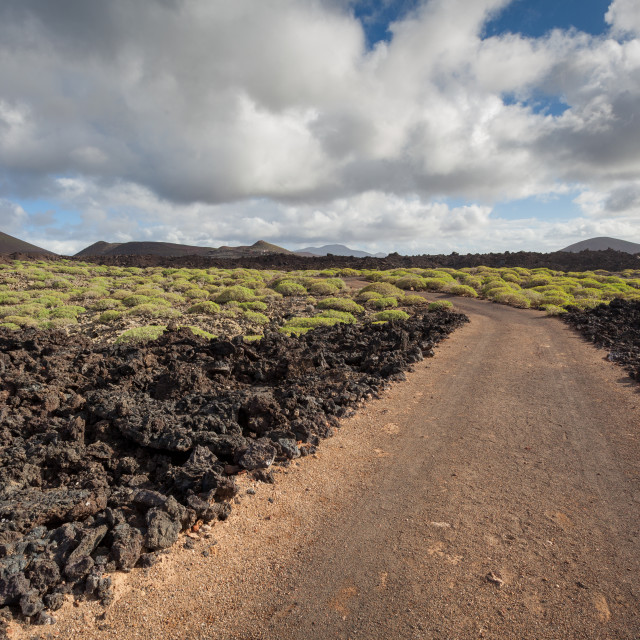 """The volcanic landscape of the Timanfaya national park on Lanzaro"" stock image"