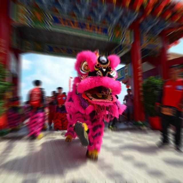 """Lion Dance"" stock image"