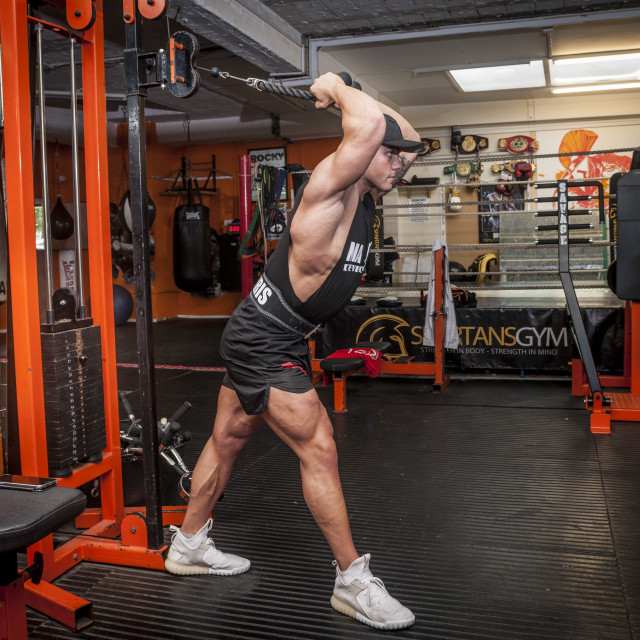 """bodybuilder exercising in the gym"" stock image"