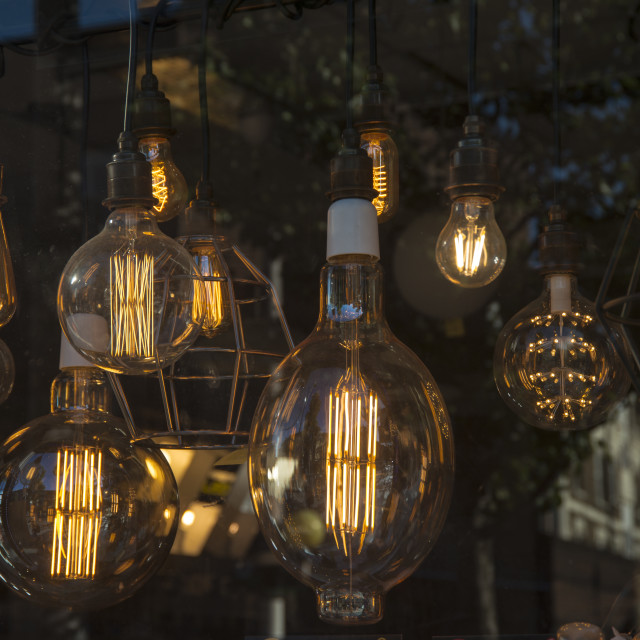"""lightbulbs hanging in a lighting shop window"" stock image"