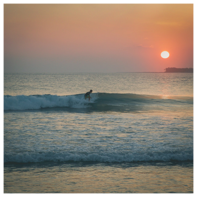 """Evening Surfer"" stock image"