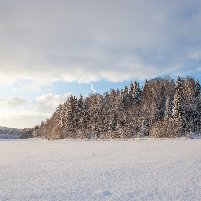 """Winter Fields"" stock image"