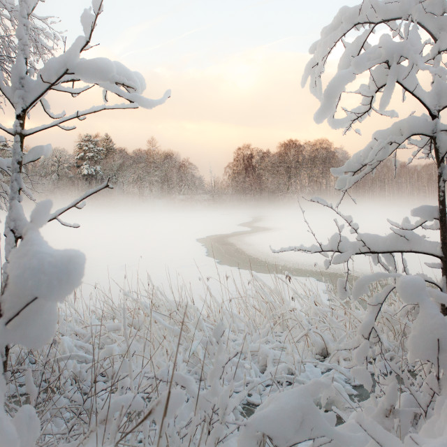 """Misty winter lake at dawn"" stock image"