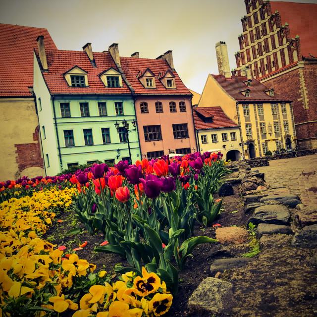 """""""Riga in Spring"""" stock image"""