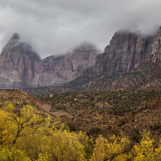 """Zion Canyon Autumn"" stock image"