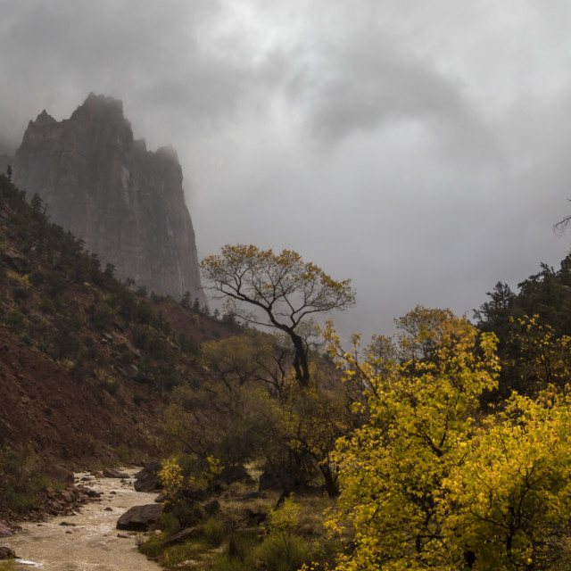 """""""Stormy Zion"""" stock image"""