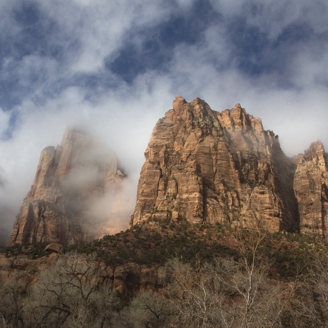 """""""Stormy Zion National Park"""" stock image"""