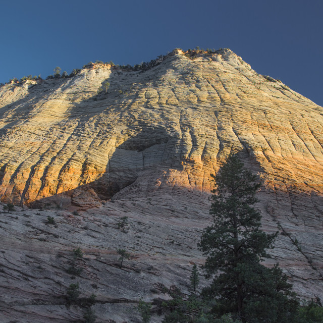 """Zion's Crazy Quilt Mesa"" stock image"