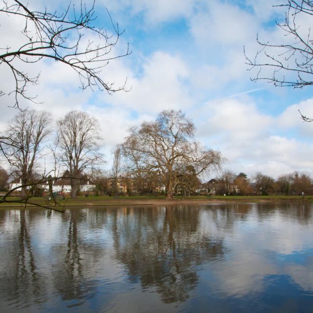 """""""Rivermead island- Sunbury on Thames"""" stock image"""