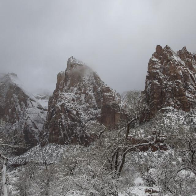 """Snowy Zion"" stock image"