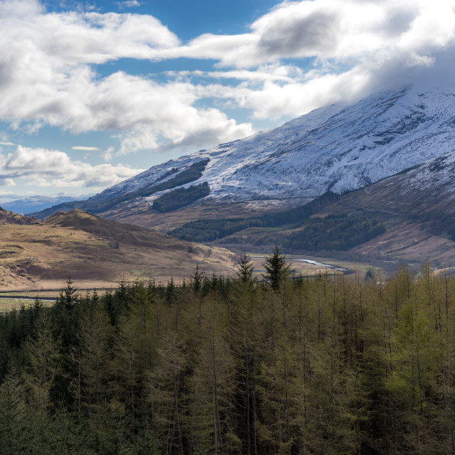 """""""Scottish valley and mountain view with forest in the foreground"""" stock image"""
