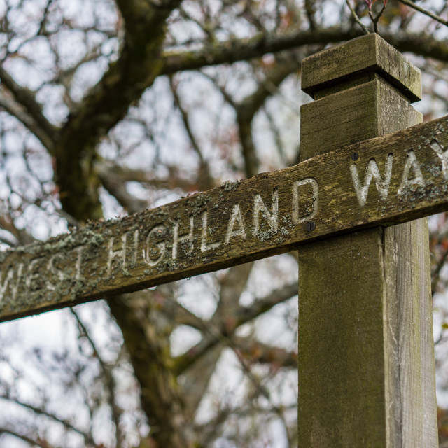 """""""Wooden signpost along the West Highland Way in Scotland"""" stock image"""