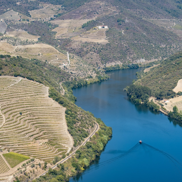 """""""Vineyards and the Douro River, Alto Douro Wine Valley"""" stock image"""