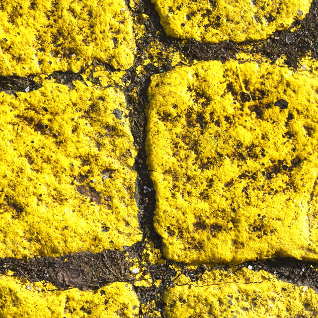 """stone kerb on the street"" stock image"