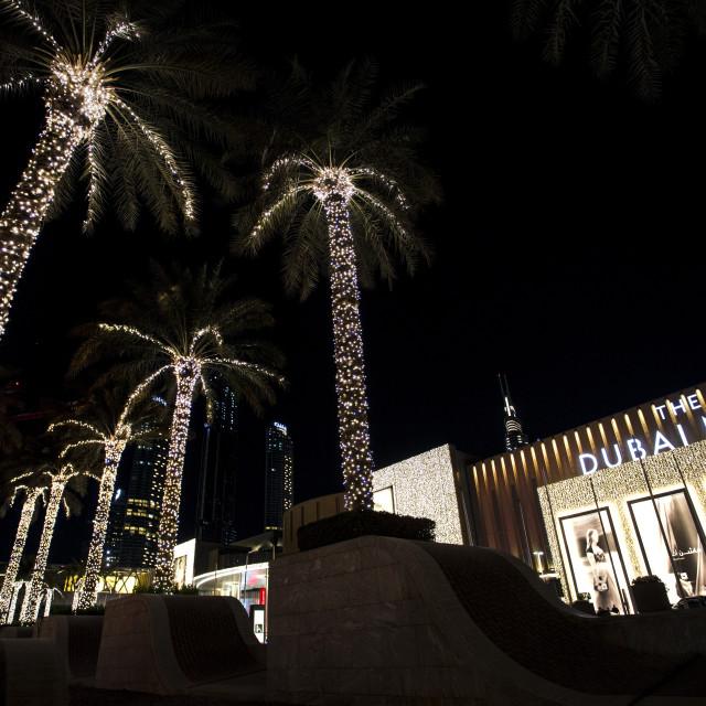 """""""Dubai Mall by night"""" stock image"""