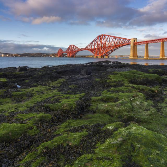 """The Forth Bridge"" stock image"