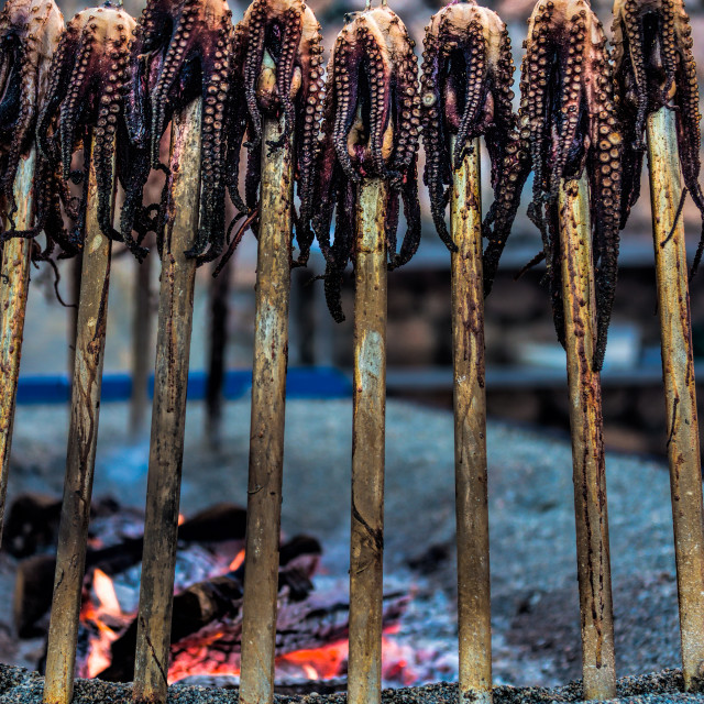 """Octopus barbecue"" stock image"