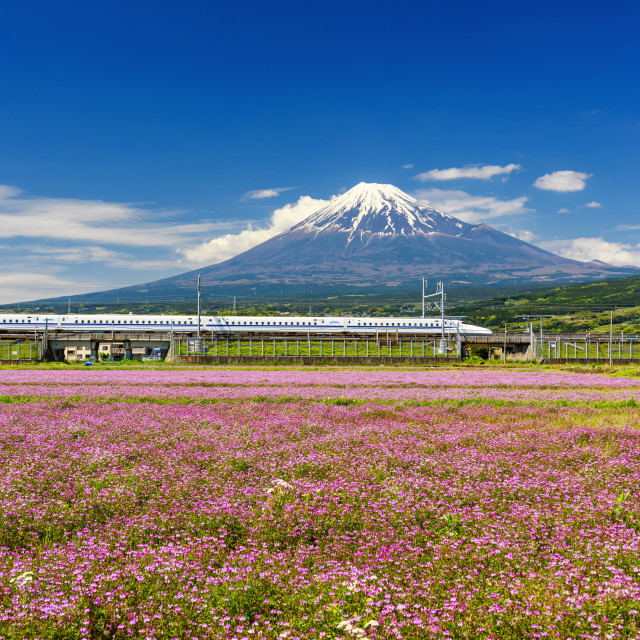 """Shinkansen bullet train with Mt. Fuji"" stock image"