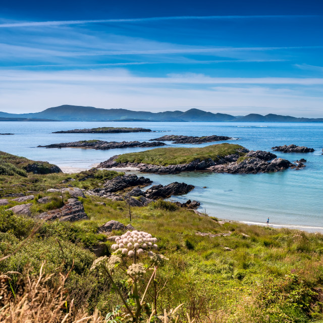 """""""Skellig bay in the western part of Ireland"""" stock image"""