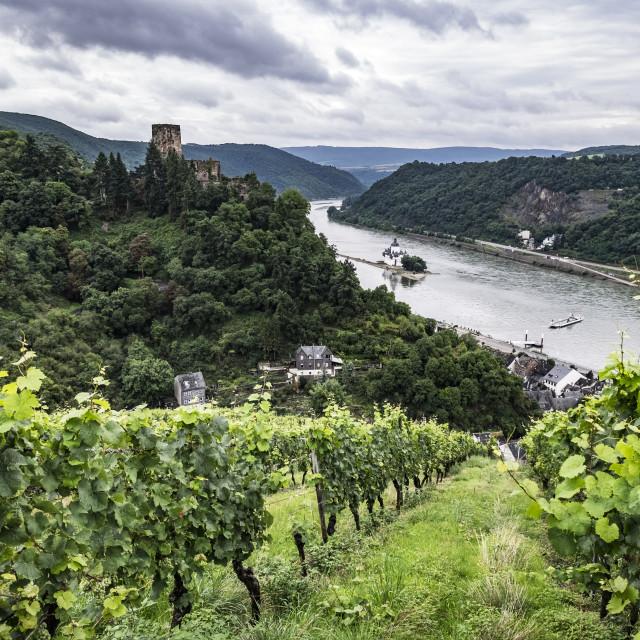 """""""Gutenfels Castle near Kaub, Rhineland-Palatinate, Germany, Europ"""" stock image"""