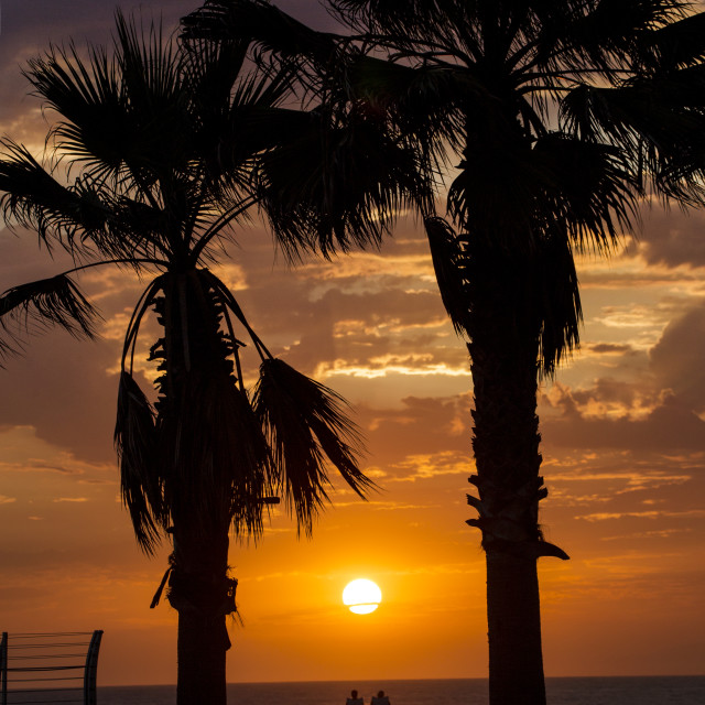 """""""Sunset on lives and the day"""" stock image"""