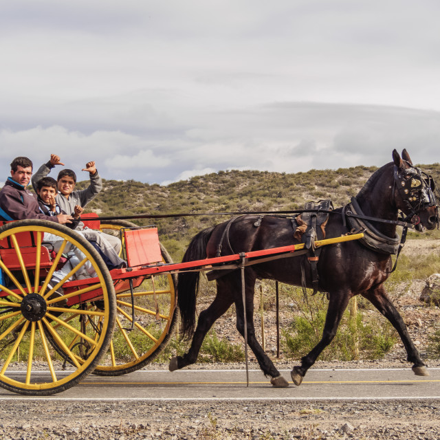 """""""Gauchos on the horse carriage, Vallecito, San Juan Province, Argentina"""" stock image"""