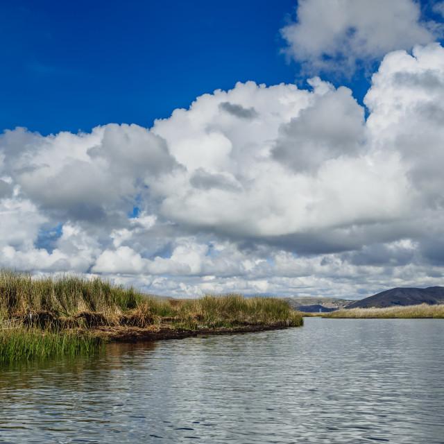 """Totora on Lake Titicaca, Puno Region, Peru"" stock image"
