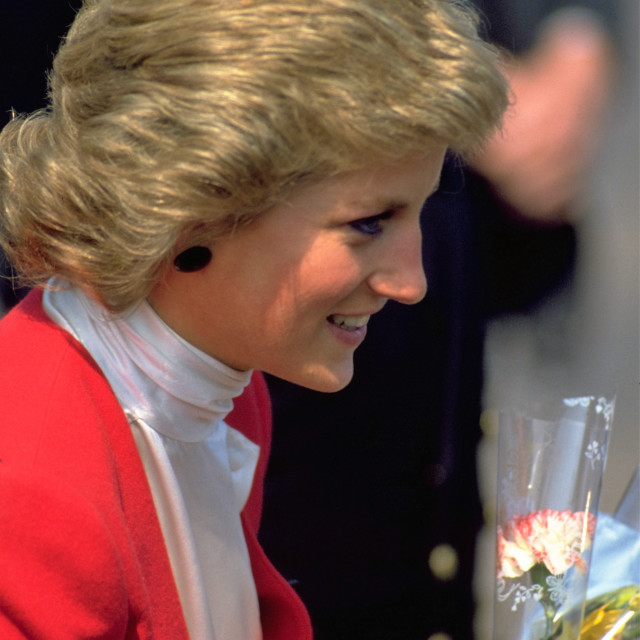 """Diana Princess of Wales"" stock image"