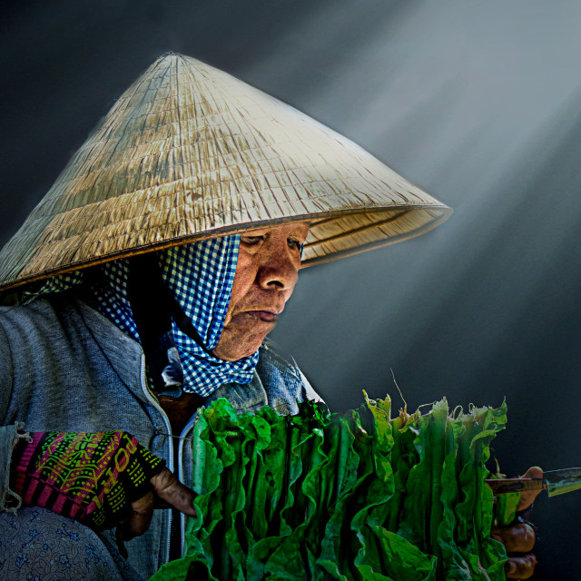 """A Vietnamese woman"" stock image"