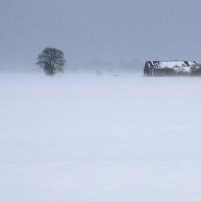 """Barn in a blizzard."" stock image"