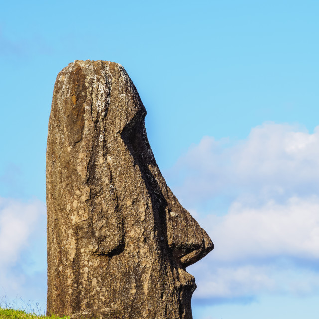 """Moai at the quarry on the slope of the Rano Raraku Volcano, Rapa Nui National..."" stock image"