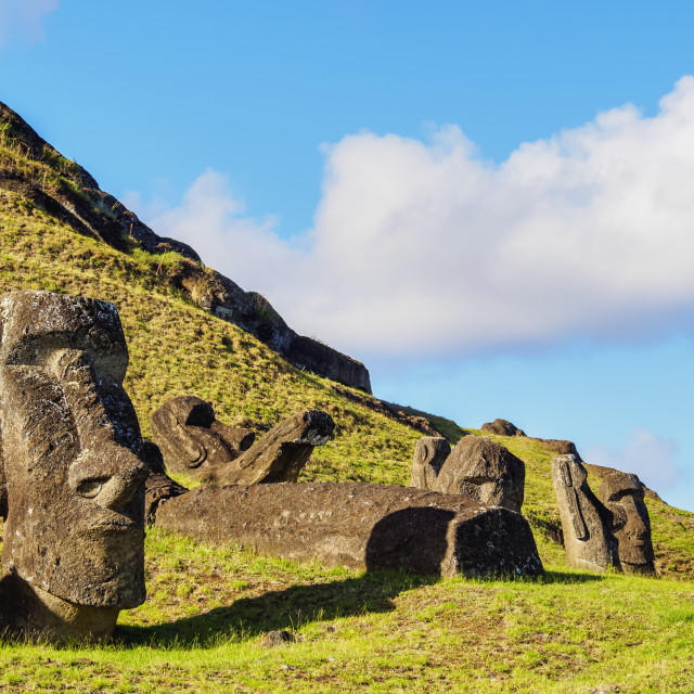 """Moais at the quarry on the slope of the Rano Raraku Volcano, Rapa Nui..."" stock image"