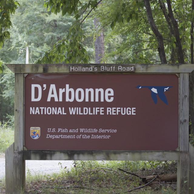 """D'Arbonne National Wildlife Refuge"" stock image"