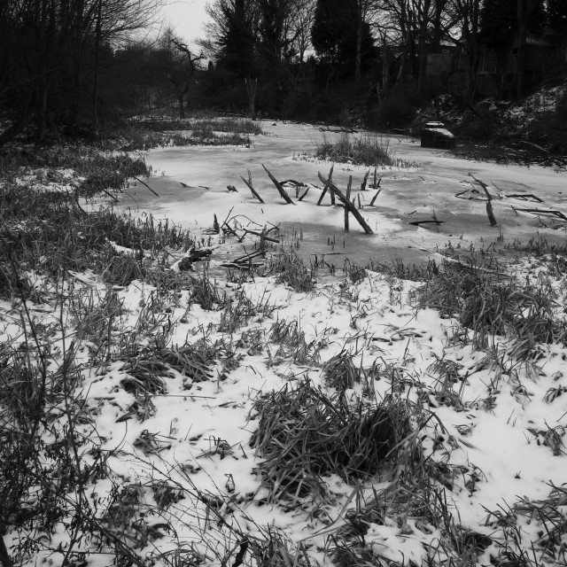 """Winter wasteland at Sale Water Park, Sale"" stock image"