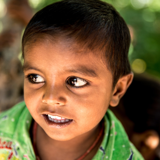 """""""Little boy from a small village smiling in India"""" stock image"""
